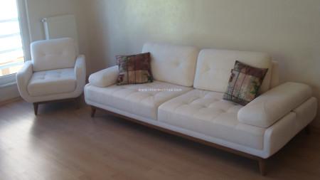 Nokay ailesinin mekanizmalı fonksiyonel oturma odası (1)