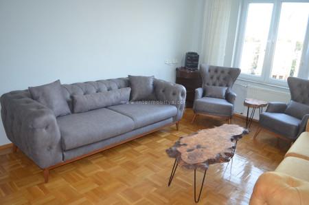 - Tetik ailesinin chesterlarla kombinlediği modern salon dekorasyonu (1)