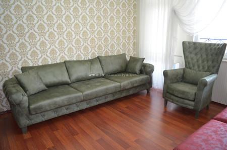 - Dengiz ailesinin göz alıcı ve keyifli oturma odası (1)